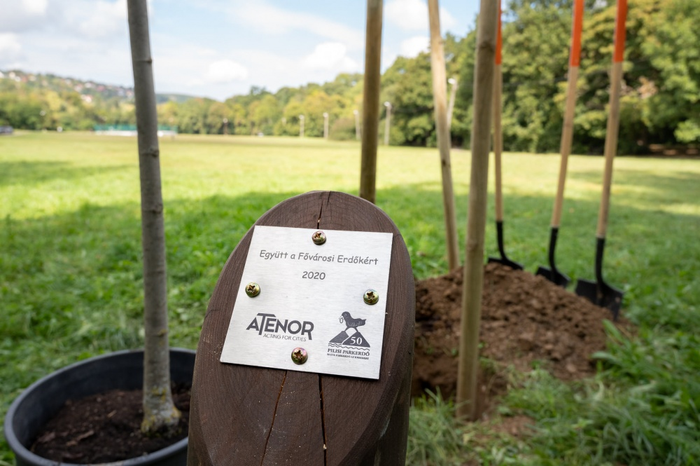 ATENOR planted 2020 trees in Budapest